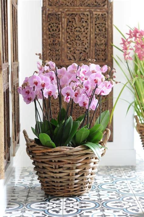 decoracion de balcones alargados ideas originales para decorar interiores con plantas