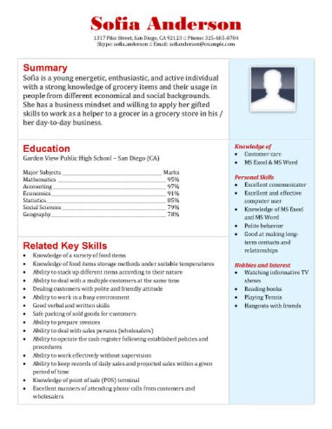 Grocery Store Resume by 20 Free Professional Resume Templates Designyep