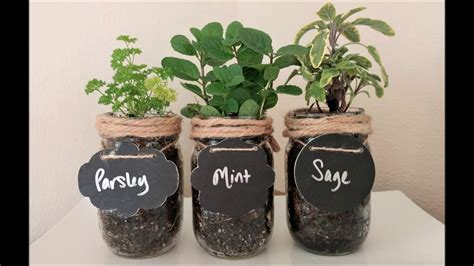 diy craft     mason jar indoor herb garden