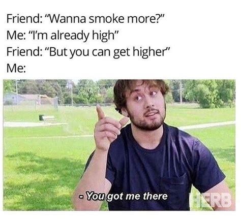 Pot Meme - 17 best ideas about weed memes on pinterest 420 memes