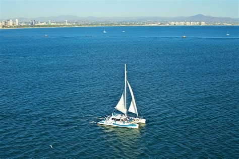 catamaran dinner cruise san diego san diego sailing photo gallery aolani catamaran
