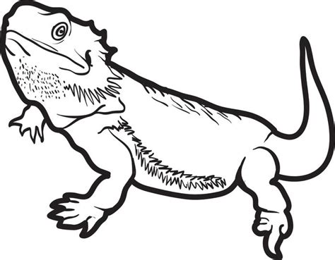 lizard coloring pages bearded dragon coloringstar