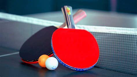 Meja Carrom table tennis ping pong table big