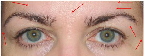 The Of Groomed Brows by How To Eyebrow Grooming For Ages Of How