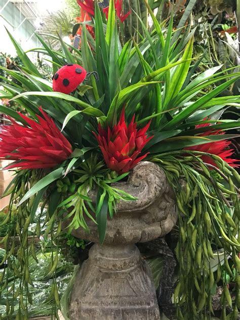 bird of paradise arrangement designed by arcadia floral top 25 ideas about designed by arcadia floral on pinterest