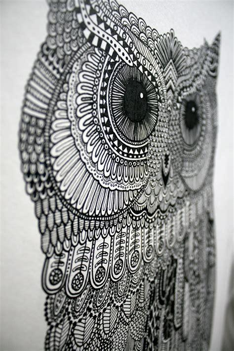 doodle owls owl illustration 2 0 on behance