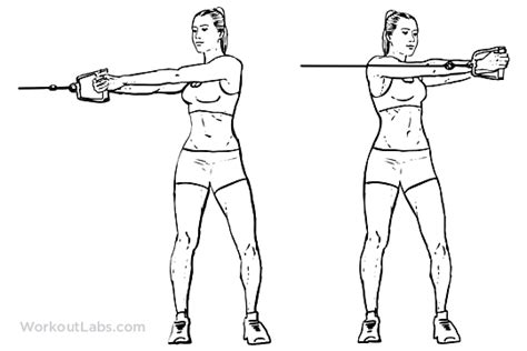 cable rotation workoutlabs