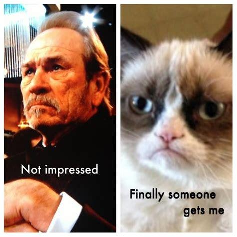 Tommy Lee Jones Meme - grumpy cat tommy lee jones in a nutshell