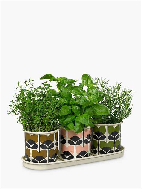 orla kiely herb pots pack    john lewis partners