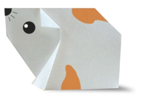 how to make an origami hamster origami hamster