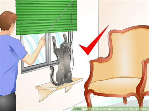 how to a not to jump on you how to a cat not to jump on your furniture 11 steps