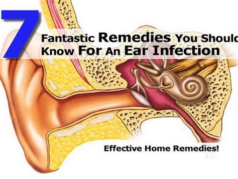 7 fantastic remedies you should for an ear infection
