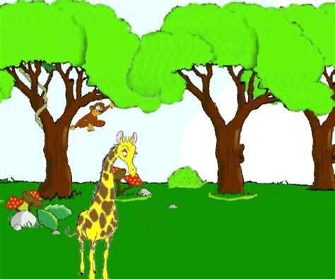 la giraffa vanitosa la giraffa vanitosa avi