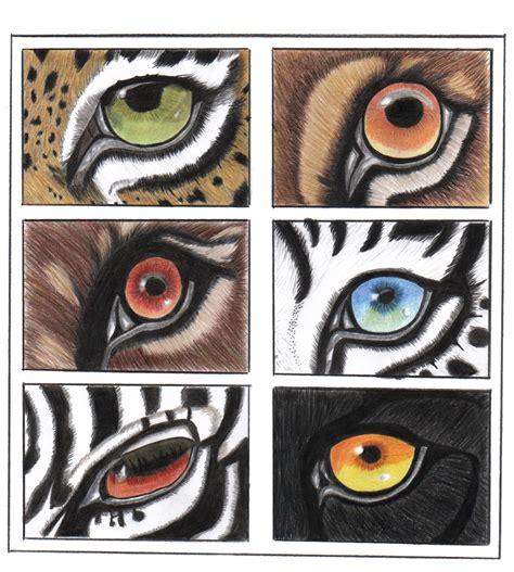 imagenes ojos de animales dibujar ojos de animales imagui