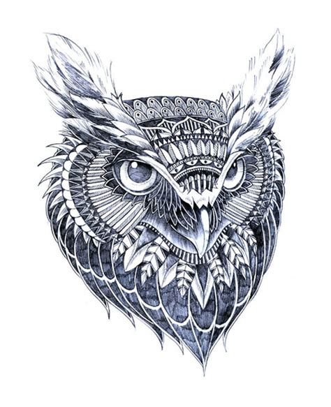 owlart on pinterest owl drawings owl tattoos and owl
