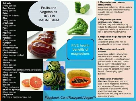 vegetables high in magnesium fruits and vegetables high in magnesium 171 healthy