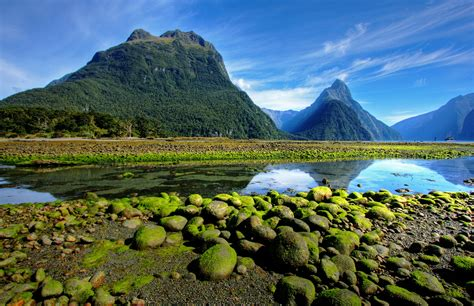 green wallpaper nz 5 things you need to know about visiting new zealand nzdcr