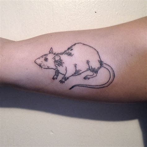 rat tattoo groundwaterpokes poked rat on ayda xdfd