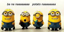 imagenes minions gif despicable me gif find share on giphy