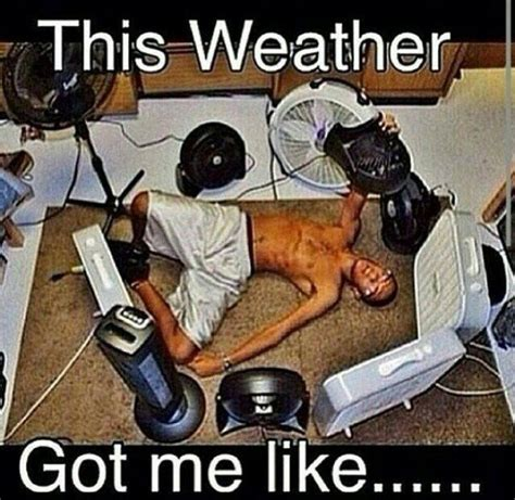 Memes About Hot Weather - 25 best ideas about weather memes on pinterest weather