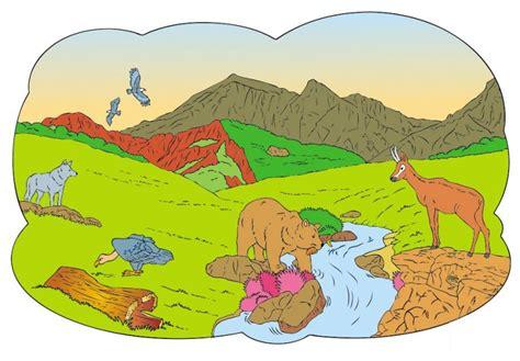 imagenes de ecosistemas faciles para dibujar ecosistemas diferentes pero iguales edicion impresa