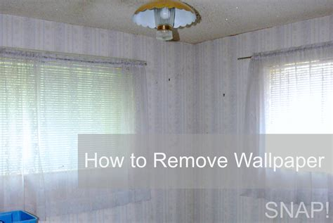 wallpaper engine how to delete how to remove wallpaper from drywall driverlayer search