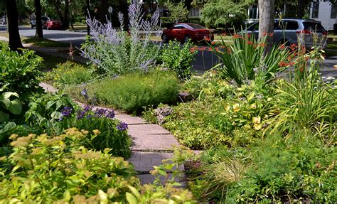 grassless front yard broken pipe prompts buffalo gardeners to create grassless