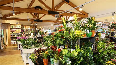 hersham squires garden centres