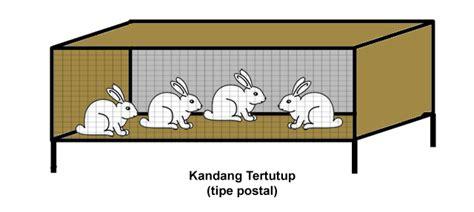 Alas Kandang Kelinci Dari Kawat Ram panduan budidaya kelinci terlengkap untuk pemula