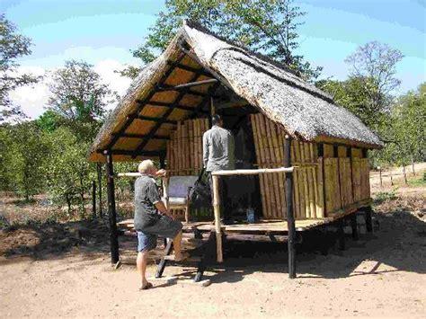 Bush Cabin cabin picture of warthogs bush c kariba tripadvisor