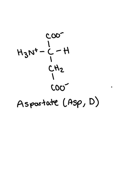 Drawing Practice - Biochemistry 400 with Harper at