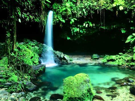 imagenes naturaleza relajante paisajes relajantes youtube