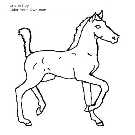 western horse coloring pages 3 - Western Horse Coloring Pages