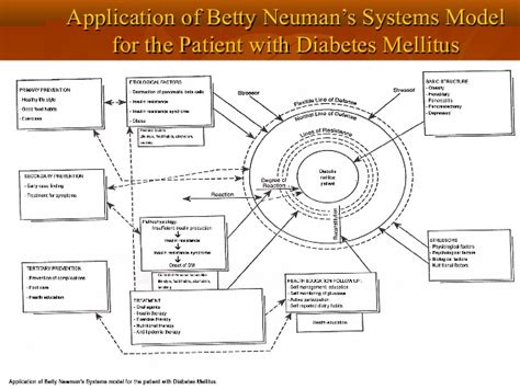 system model diagram betty neuman systems model diagram roper logan tierney