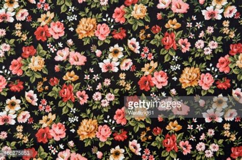 floral pictures floral pattern stock photos and pictures getty images