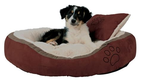 cuscini per cani grandi la miglior cuccia per cani di aprile 2018 le 6 migliori
