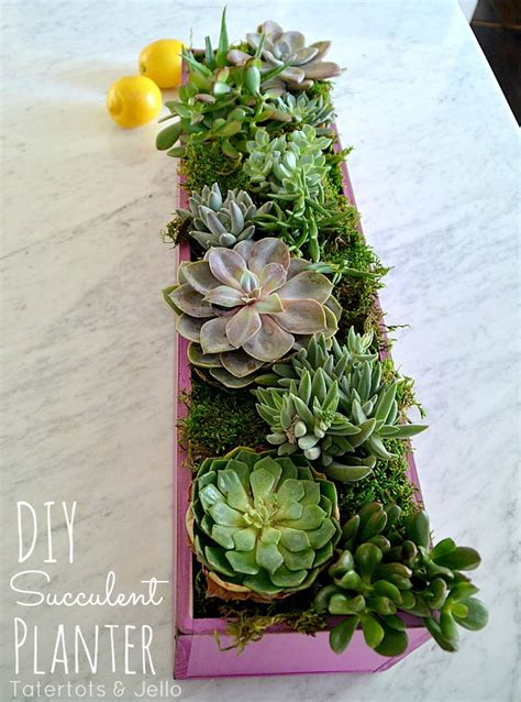 diy succulent planter diy wooden succulent planter