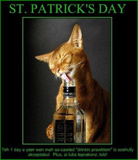 Funny St Patricks Day Meme - dirty funny st patrick s day pictures pics for facebook