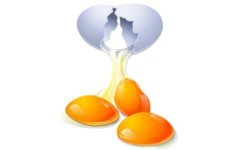arts clipart yolk cliparts
