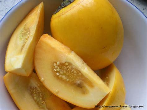 iban ubi sicantik kuning solanum ferox supriyadi marunting