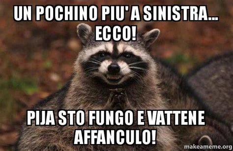 Raccoon Memes - evil raccoon meme memes