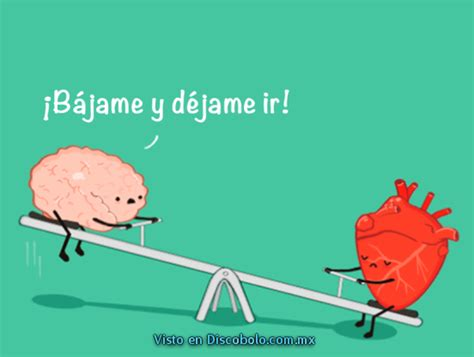 corazn y cerebro juego cerebro y corazon humor humor and