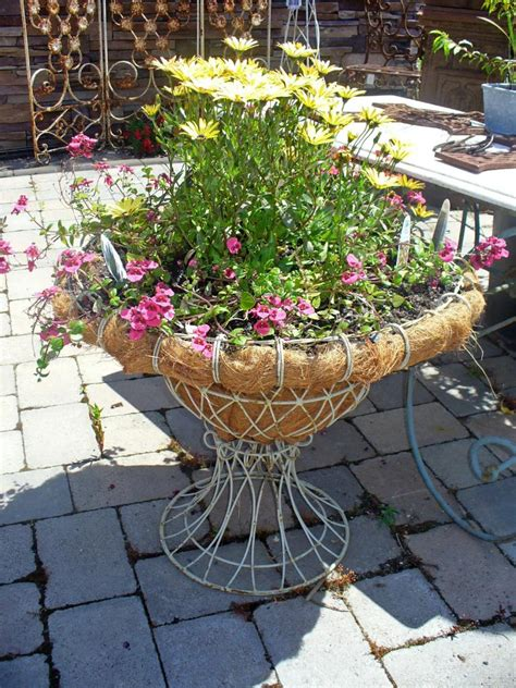 Wire Garden Planters by Waldorf Kennels And Gardens Wire Planter W3430