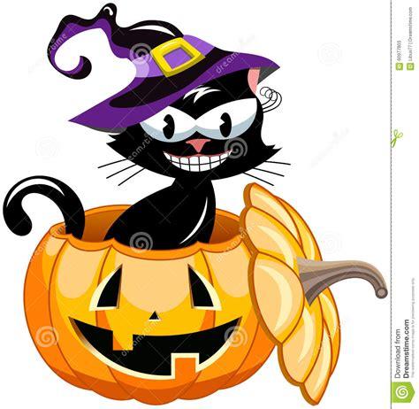 imagenes halloween gato gato negro de halloween dentro de la calabaza ilustraci 243 n