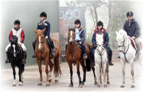 All Weather Surfaces For Horses home www ashtonhallequestriancentre co uk