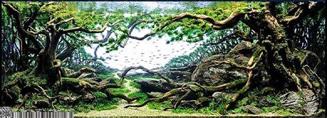 aquatic world  international aquatic plants layout