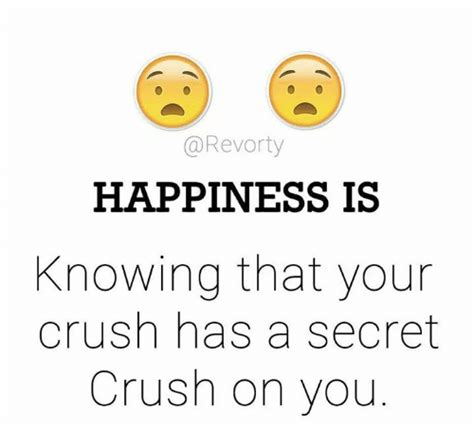 I Have A Crush On You Meme - happiness is knowing that your crush has a secret crush on
