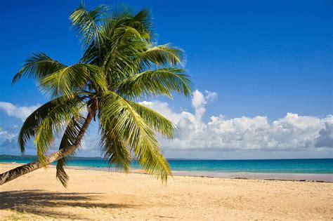 strand themenb der ferien reklamationen touristen hotels str 228 nde