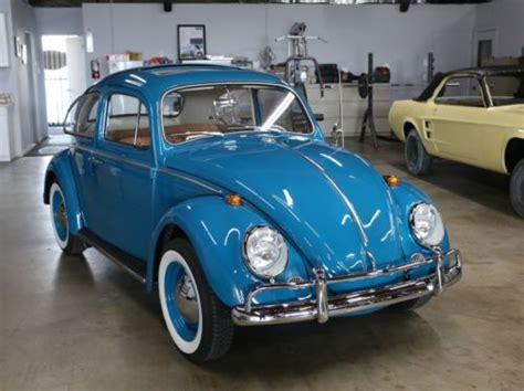 volkswagen beetle  sale   cars