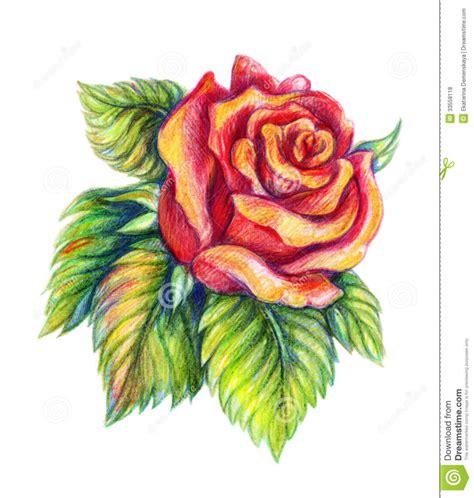 Gamis Roseflowry flower drawing drawing sketch library